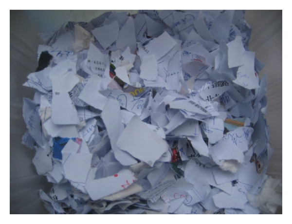 (a) The manually torn document