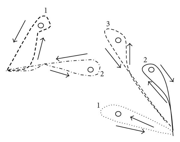 657095.fig.0017