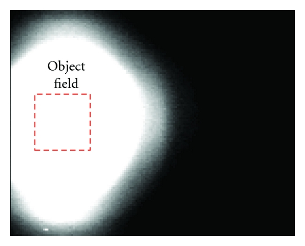 (b) Detected test image via the integrated photodiode matrix (PD) without optical elements (e.g., lens, mirror).
