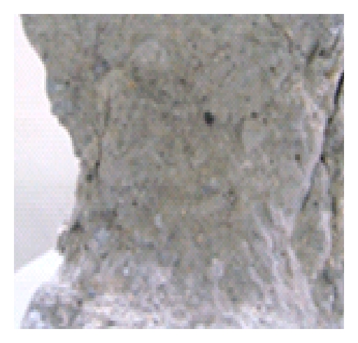 420136.fig.004a