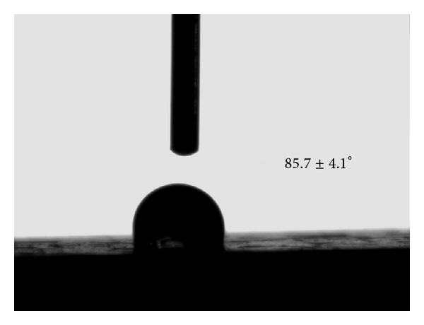 703610.fig.006a