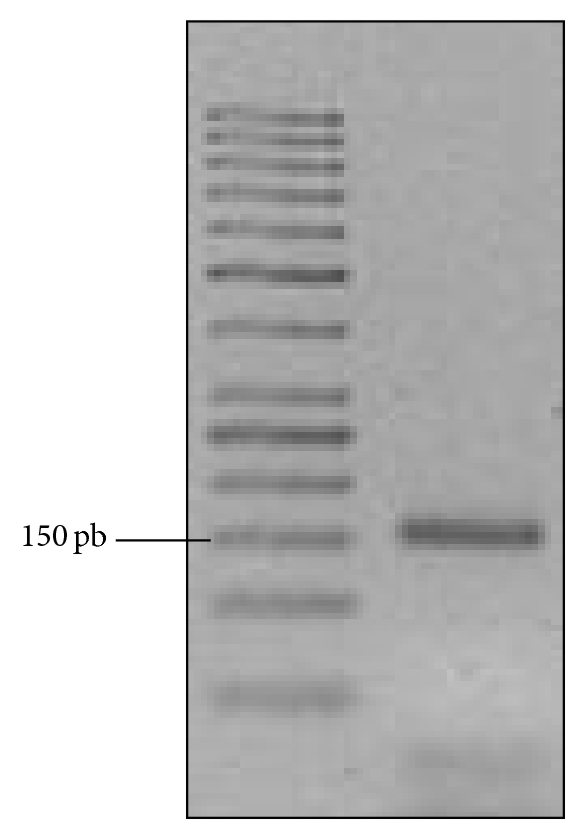 289236.fig.004a