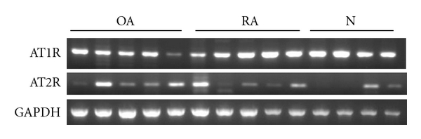 648537.fig.001