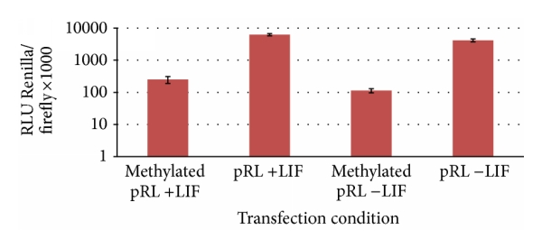 (a) Effect of differentiation on ES cell ability to demethylate reporter plasmid