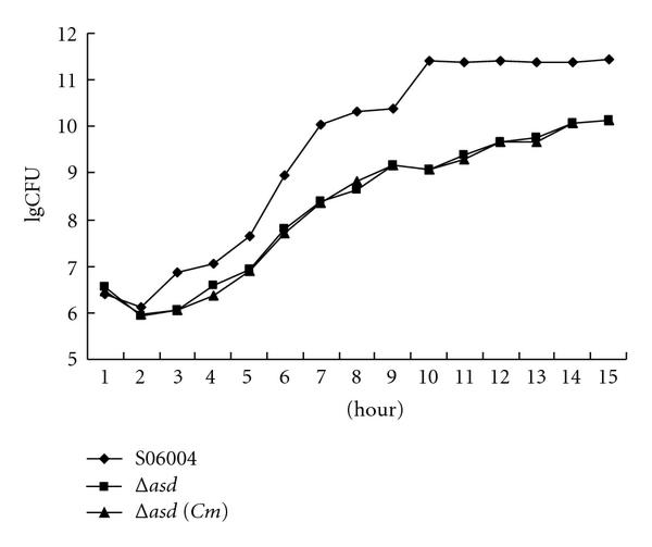 646380.fig.004