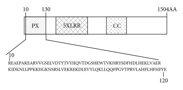 973754.fig.001a