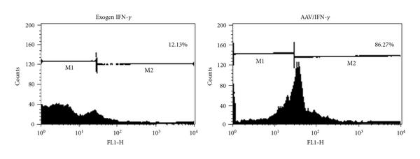 270985.fig.004a