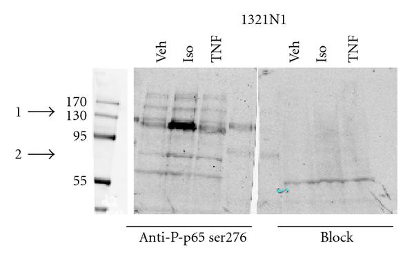 275892.fig.001a