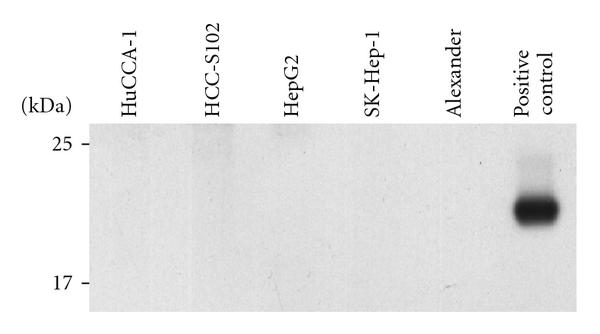 437143.fig.003a