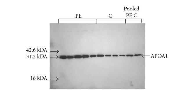458748.fig.005a