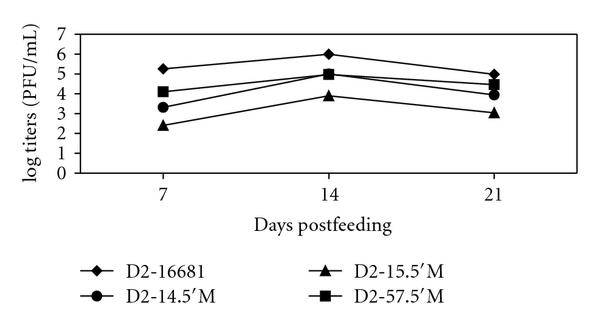 (c) Kinetic of replication of DEN-2 mutants in Aedes aegypti by oral feeding
