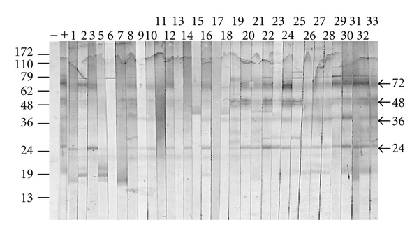 504959.fig.002