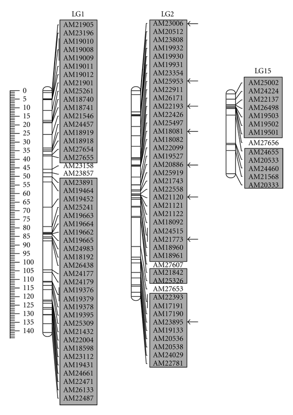 405940.fig.002