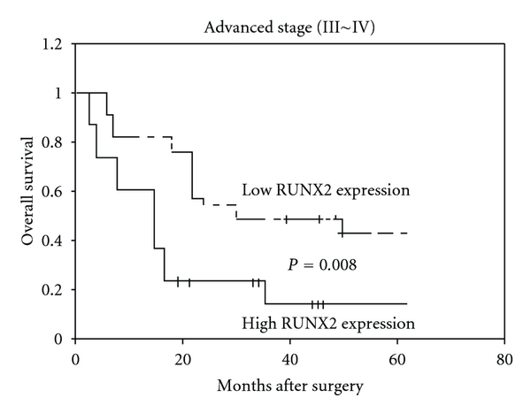Figure 3 Overexpression Of Runt Related Transcription Factor 2 Is Associated With Advanced Tumor Progression And Poor Prognosis In Epithelial Ovarian Cancer