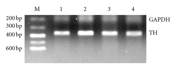 732909.fig.006a