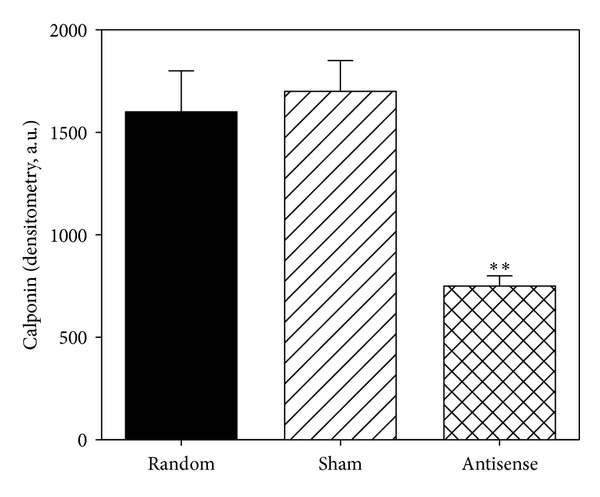 358643.fig.004a