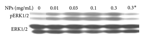 539348.fig.004a
