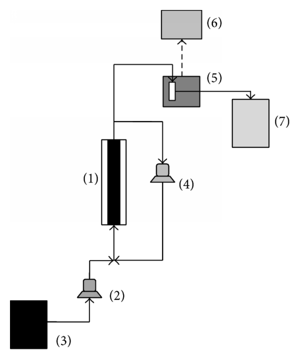 308613.fig.001