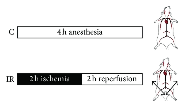 392390.fig.001a