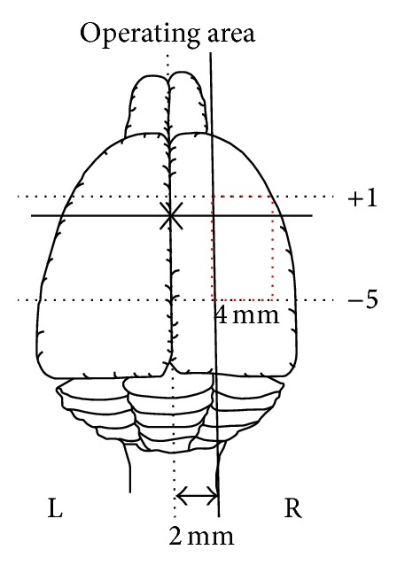 672409.fig.002a