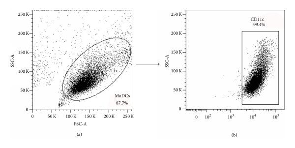743069.fig.001
