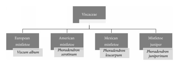 785479.fig.003
