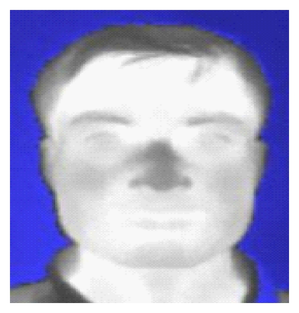 (a)    Thermal face image