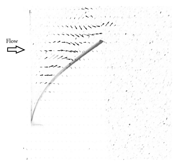 371315.fig.001