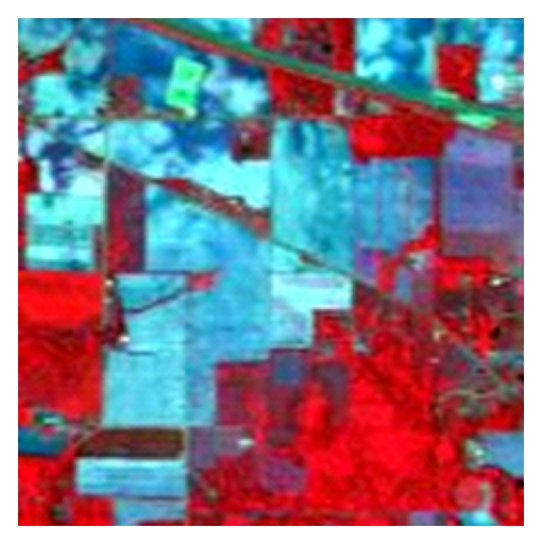 (b) False color image synthesized by bands 42, 29, 120