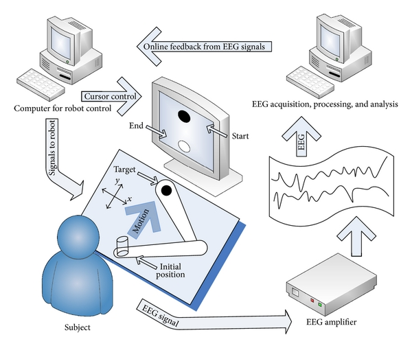 (a) Robotic manipulandum system was used to deliver required perturbations during the course of reaching movement. A setup for 2D movements was used to record the trajectories followed by different subjects under the application of external force field. This movement onset was controlled through a feedback mechanism involving EEG