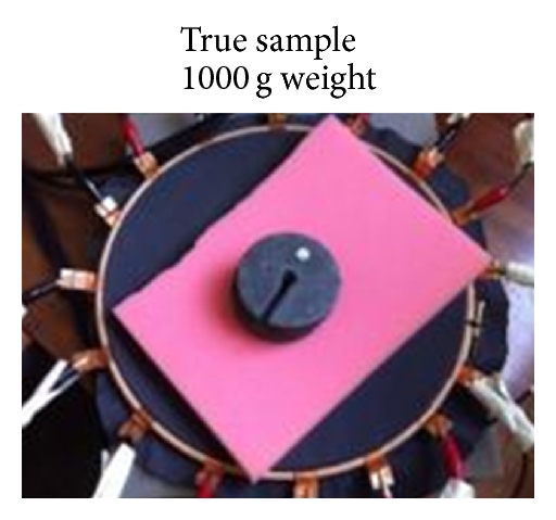 405325.fig.003a