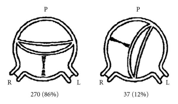 478259.fig.001