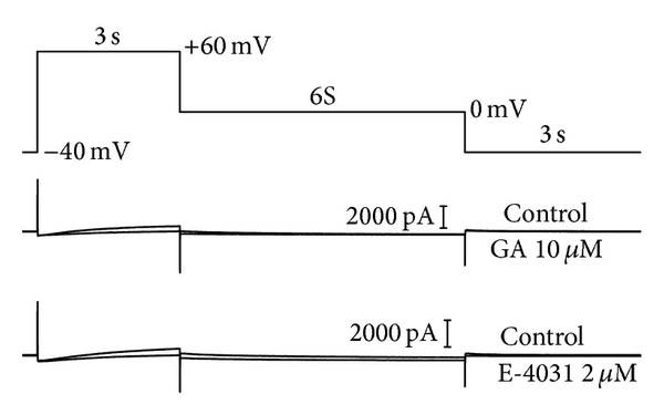 481830.fig.002a