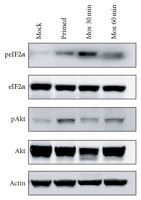 450623.fig.002a
