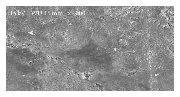 129647.fig.009
