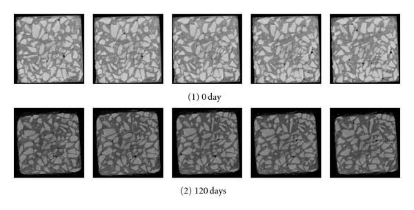 (g) Scanning layer of cross-section 2-2