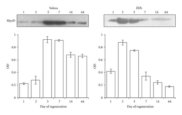659372.fig.002a