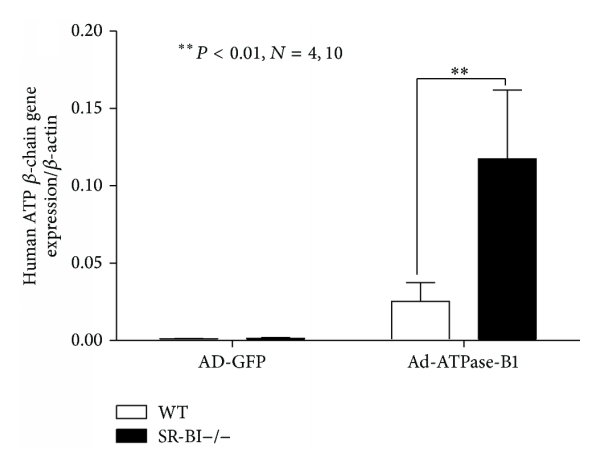 356432.fig.005a