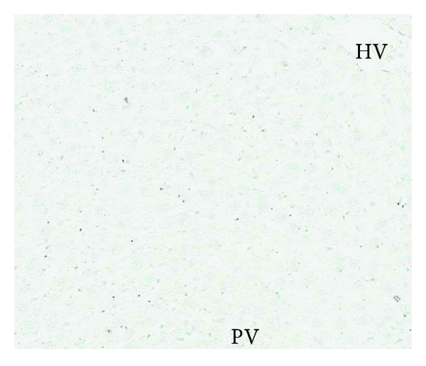 149123.fig.003a