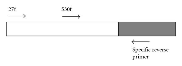 750613.fig.001