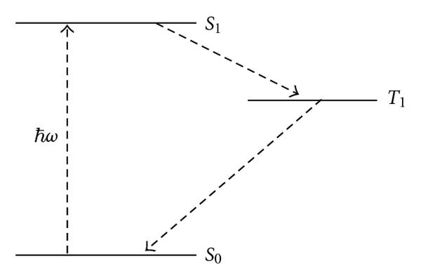 371974.fig.001