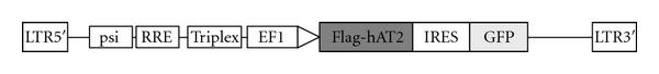 745027.fig.001