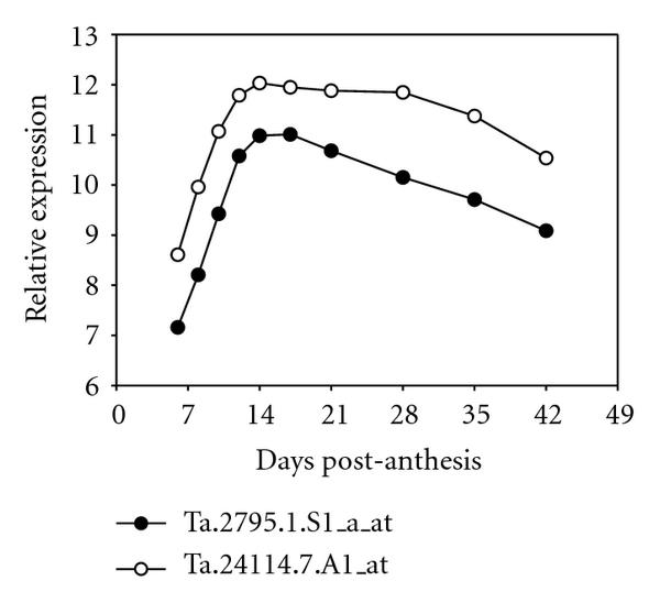 407426.fig.006p