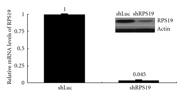 394545.fig.004