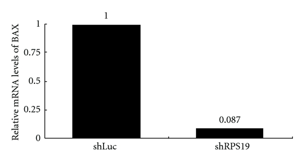 394545.fig.005