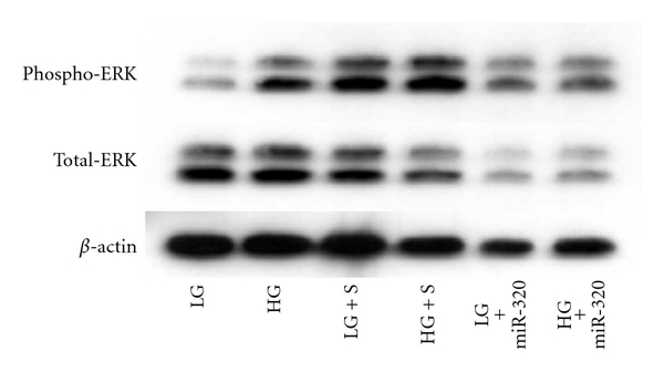 549875.fig.004