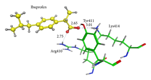 (a)  Ibuprofen in the crystal structure of 2BXG