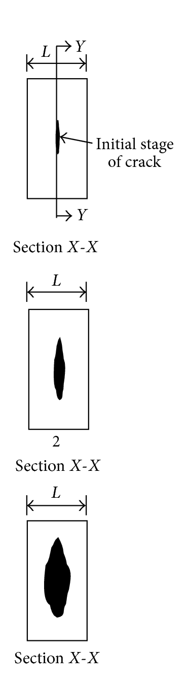 (b) Crack propagation along vertical diameter and thickness