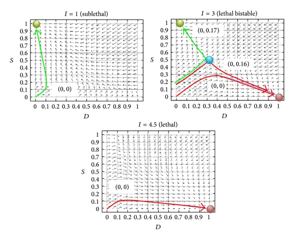 (b) Phase planes, trajectories, and attractor states