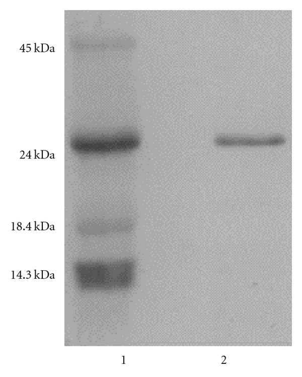 728082.fig.001